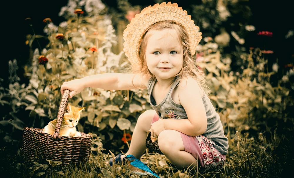 女の子、猫、バスケット、植物