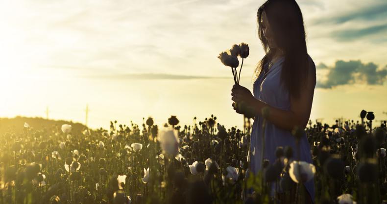女性、花、空